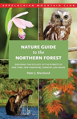 Nature Guide to the Northern Forest By Marchand, Peter J.